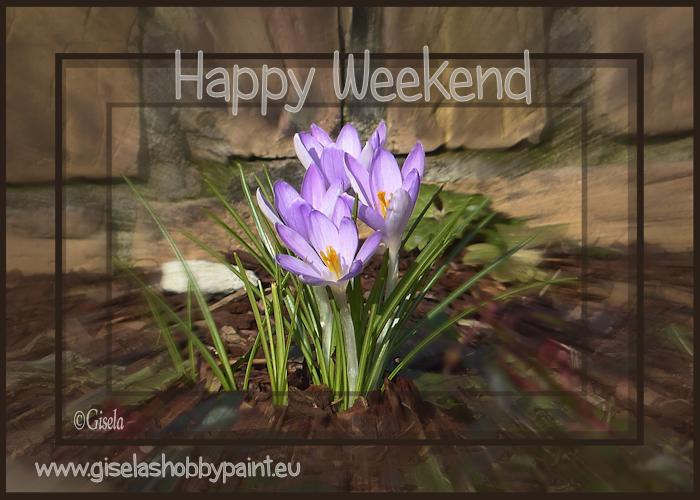 An den Beitrag angehängtes Bild: http://www.giselashobbypaint.eu/images/Bilder/Blumen/blumen%2066a.png