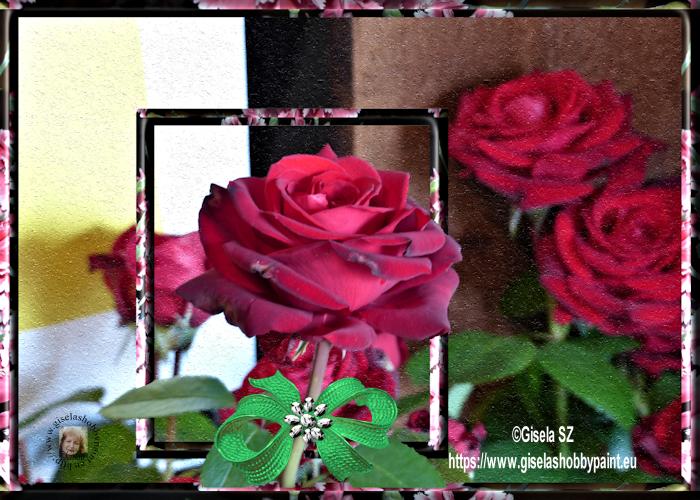 www.giselashobbypaint.eu/images/Bilder/Blumen/blumen68a3.png