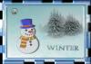 winter43